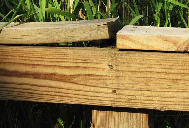 Xu hướng gỗ công nghiệp Melamine của thời hiện đại - bạn đã biết chưa? - Ảnh 5.