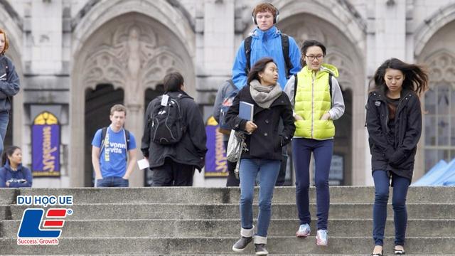 Tăng cơ hội định cư Canada sau tốt nghiệp với lộ trình du học thông minh - Ảnh 3.