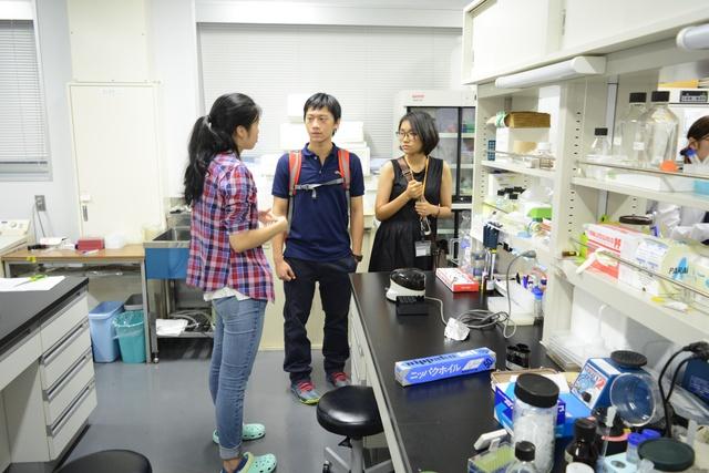 Khám phá đất nước Nhật Bản – Cơ hội trong mơ dành cho học sinh THPT - Ảnh 1.