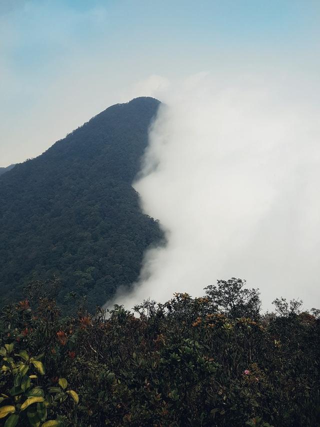 3 đỉnh Tam Đảo: Cung đường trong mơ không thể bỏ lỡ - Ảnh 2.