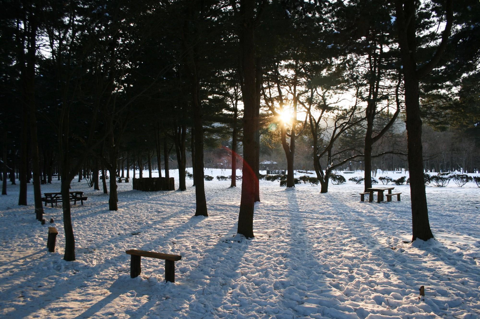 Lạc trong bản tình ca của mùa đông Hàn Quốc - Ảnh 3.
