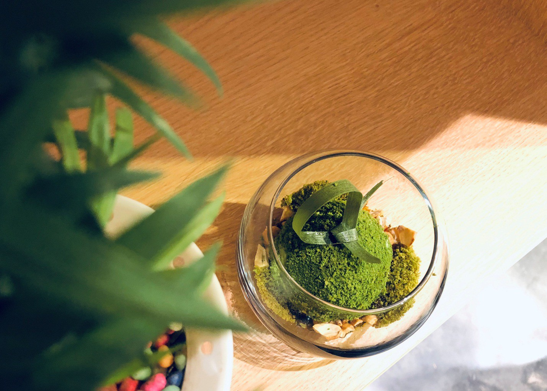 """Không chỉ là trà xanh, đó chính là """"văn hóa matcha"""" Nhật Bản - Ảnh 3."""