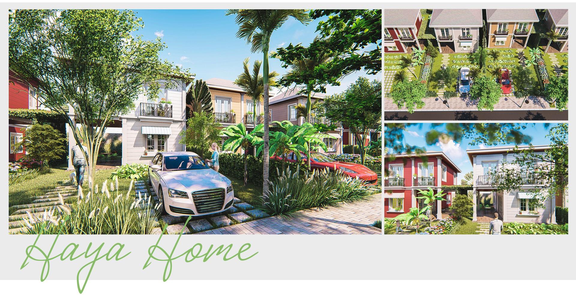 HayaHome - Phát triển mô hình biệt thự nhà vườn là phương thức bảo tồn thiên nhiên miền Tây - Ảnh 9.