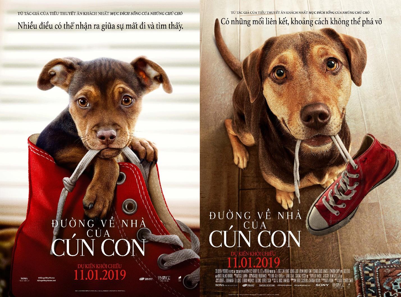 """A Dog's Way Home đốn tim các """"sen"""" bằng độ cute vô đối của chú cún Bella - Ảnh 1."""