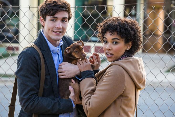 """A Dog's Way Home đốn tim các """"sen"""" bằng độ cute vô đối của chú cún Bella - Ảnh 5."""