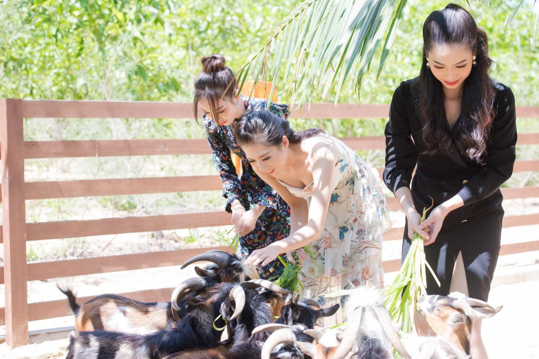 """Khám phá vẻ đẹp của quần thể vừa được WTA vinh danh """"Khu nghỉ dưỡng biển hàng đầu Việt Nam"""" - Ảnh 7."""