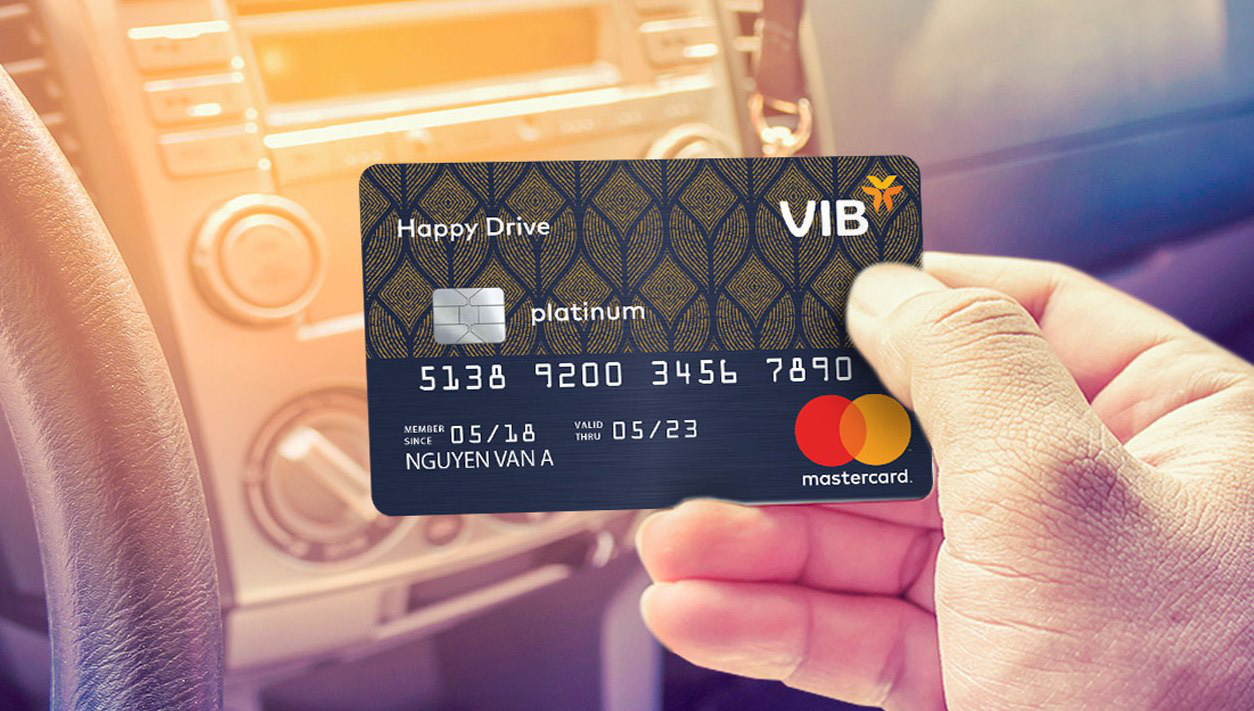 Image result for vib happy drive