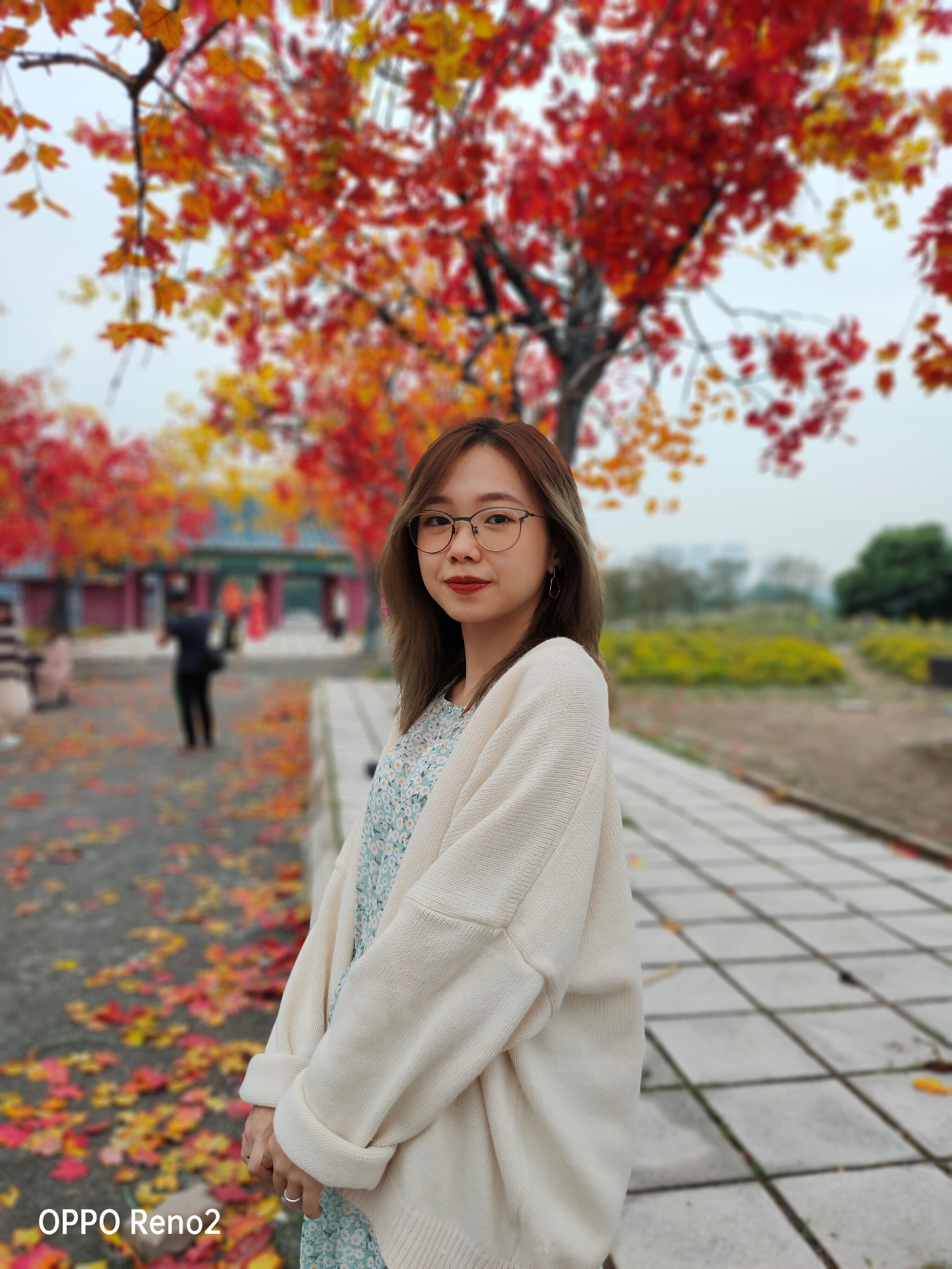 Đi Nhật, Hàn làm gì cho xa khi ở Hà Nội cũng có cảnh lá vàng đẹp đến nao lòng - Ảnh 4.