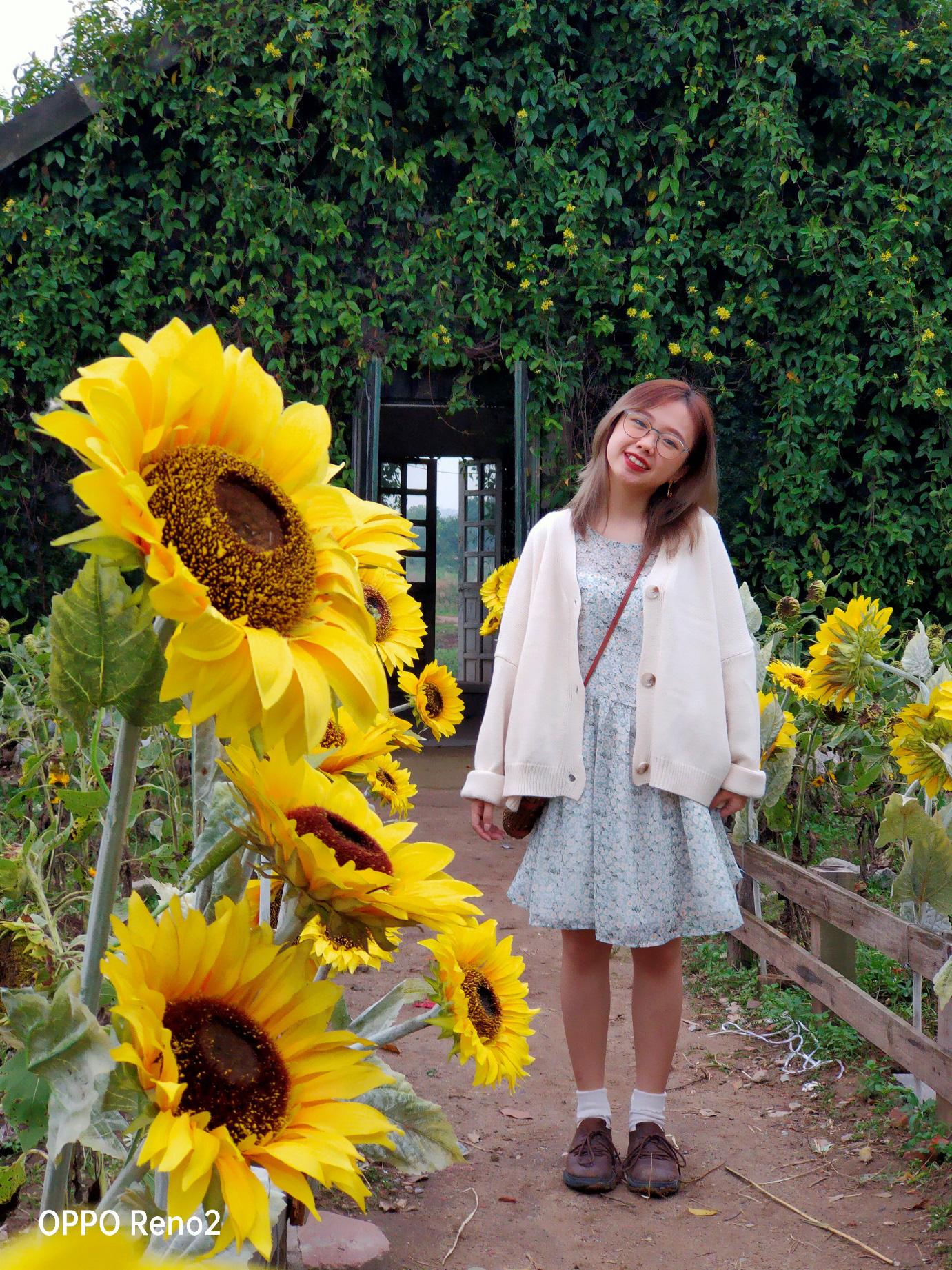Đi Nhật, Hàn làm gì cho xa khi ở Hà Nội cũng có cảnh lá vàng đẹp đến nao lòng - Ảnh 5.