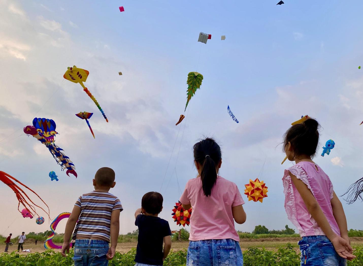 Một vé ôn lại tuổi thơ với cánh đồng diều lộng gió ngay sát Sài Gòn - Ảnh 2.