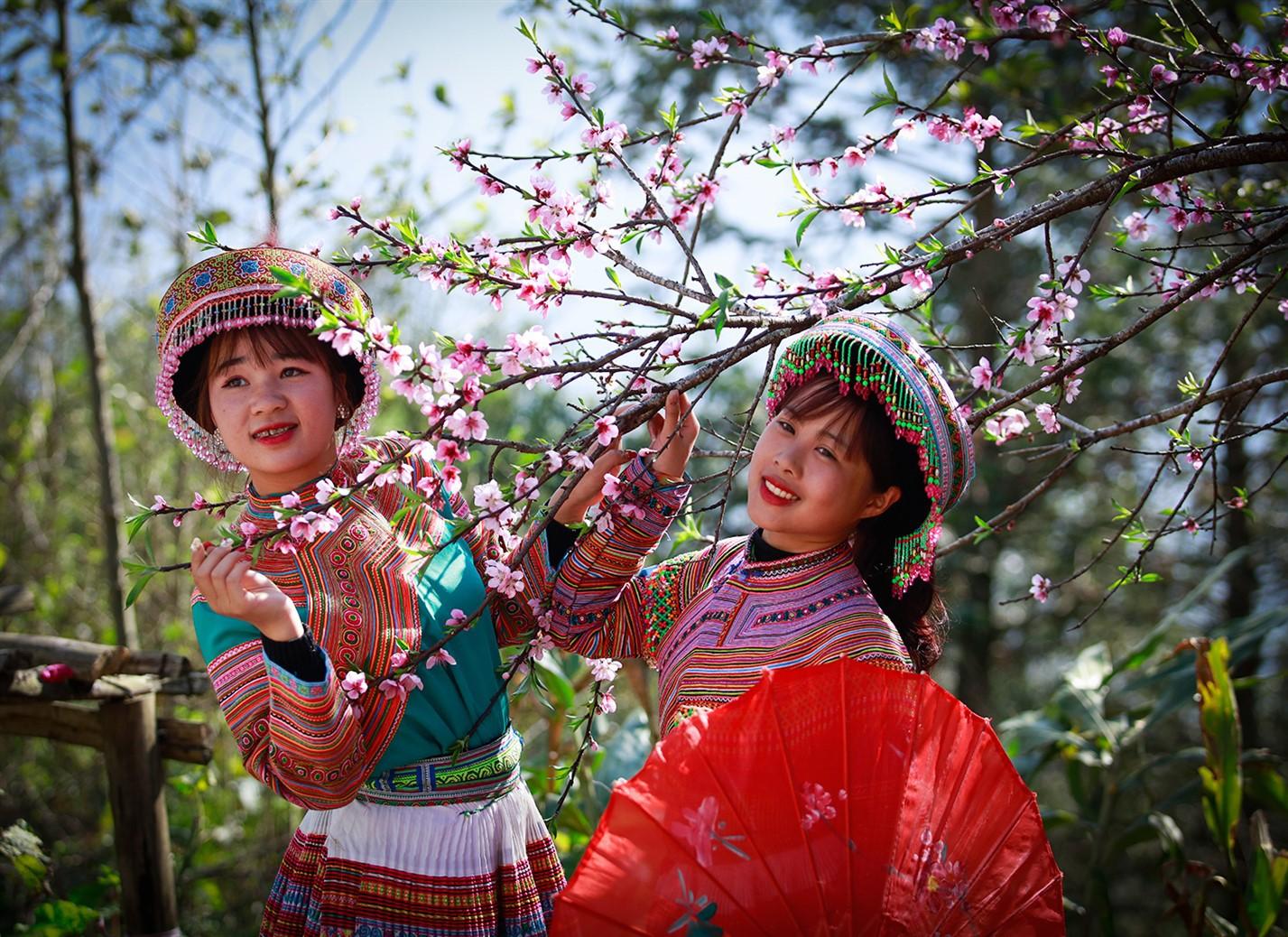 Cận cảnh thiên đường hoa nở trong mây ở Fansipan - Ảnh 5.