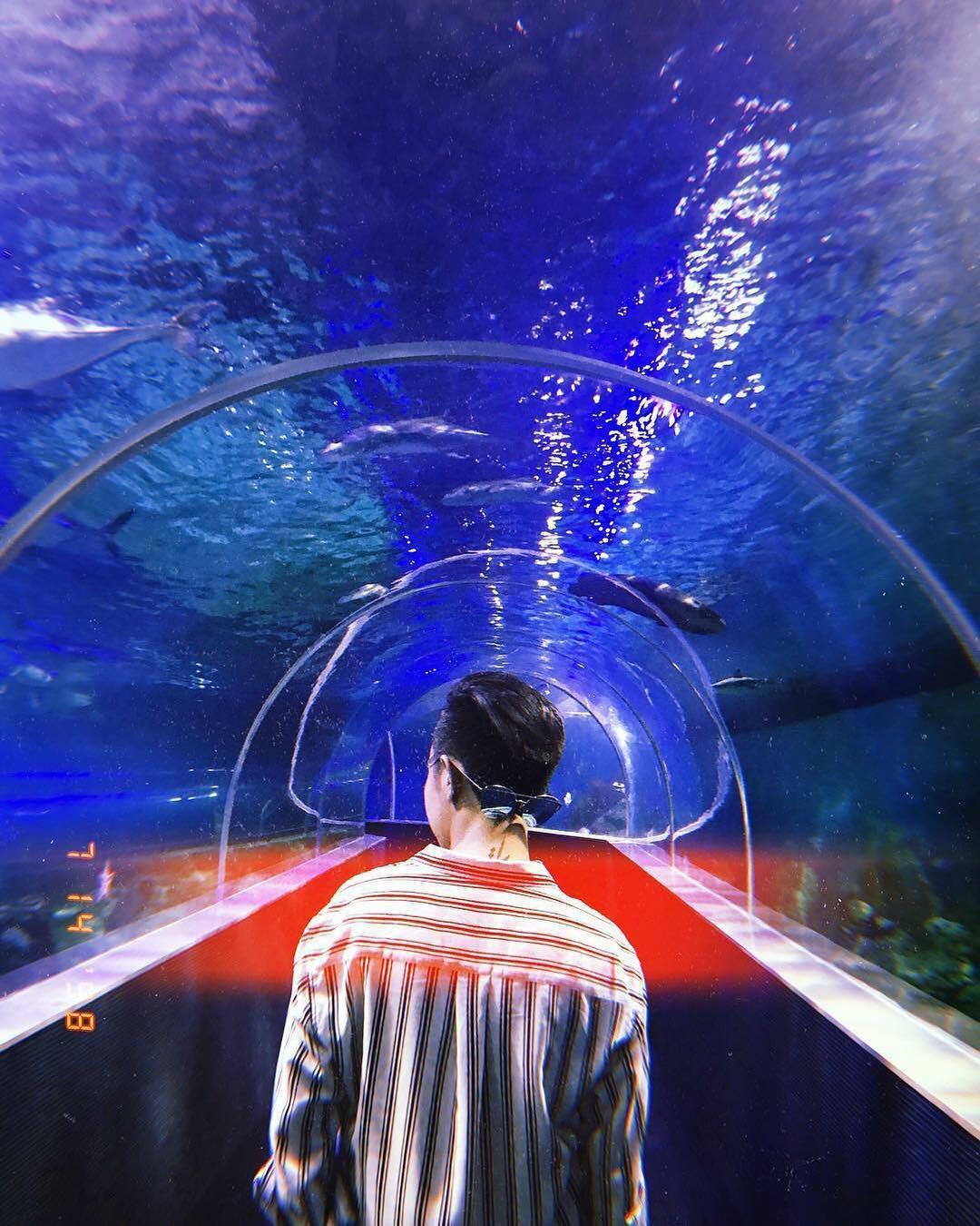 5 điểm đến tại Việt Nam được du khách check-in rần rần, khoe ảnh đẹp lung linh trên Instagram - Ảnh 9.