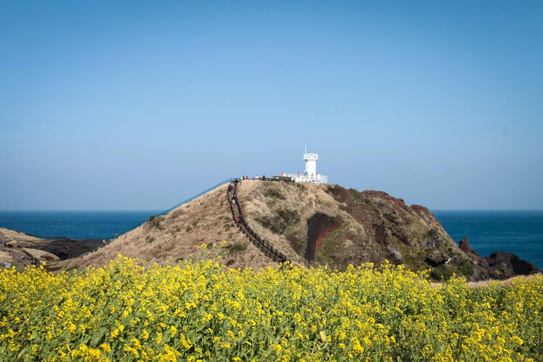 5 địa danh nhất định phải đến khi đi du lịch Jeju - Hàn Quốc - Ảnh 3.