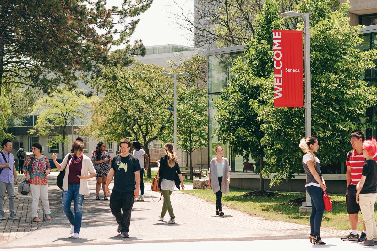 Đến Toronto, Canada, học ở Seneca, tương lai bay xa - Ảnh 1.