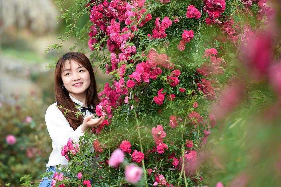 Ngỡ ngàng biển hoa tím đẹp như cổ tích tại Fansipan - Ảnh 9.