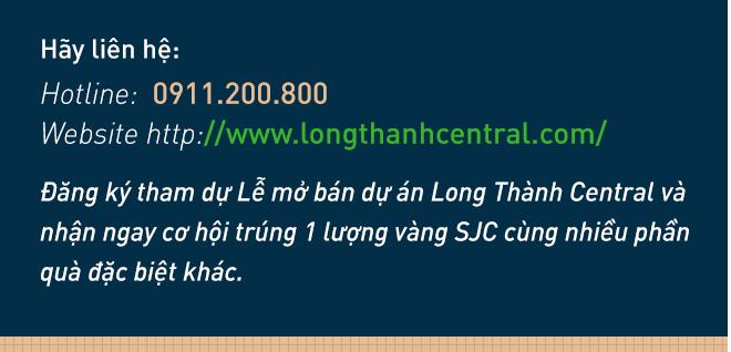 """Quy hoạch """"Thành phố sân bay"""" tại Long Thành sẽ mở ra bài toán đầu tư bất động sản Đồng Nai? - Ảnh 14."""