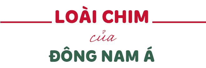 BAYA và tham vọng kiến tạo không gian sống cho mọi tổ ấm Việt - Ảnh 4.