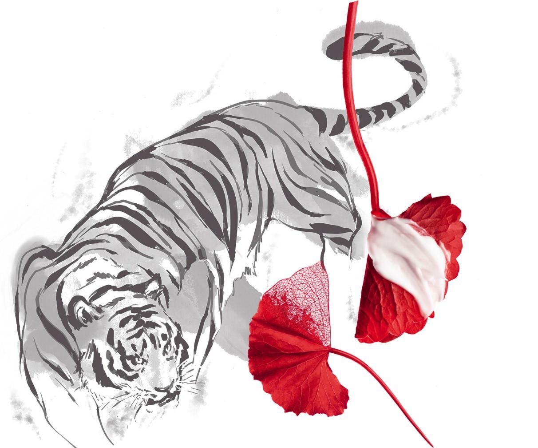 Lá cỏ hổ - Tên cực lạ, công dụng cực vi diệu, phải áp dụng để da căng mướt như pha lê! - Ảnh 2.