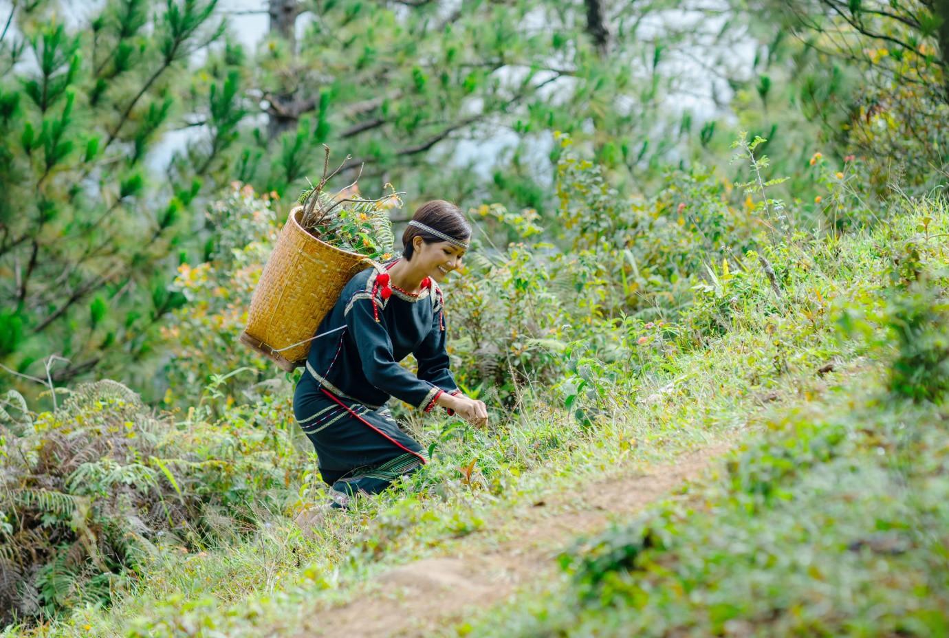 H'Hen Niê tiếp thêm nguồn cảm hứng mới cho du lịch Lâm Đồng - Ảnh 1.