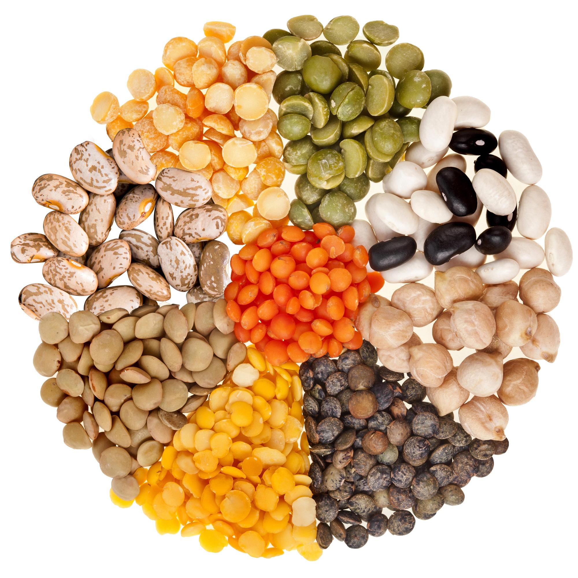 Đậu khô – sự lựa chọn tuyệt vời cho những bữa ăn dinh dưỡng - Ảnh 1.