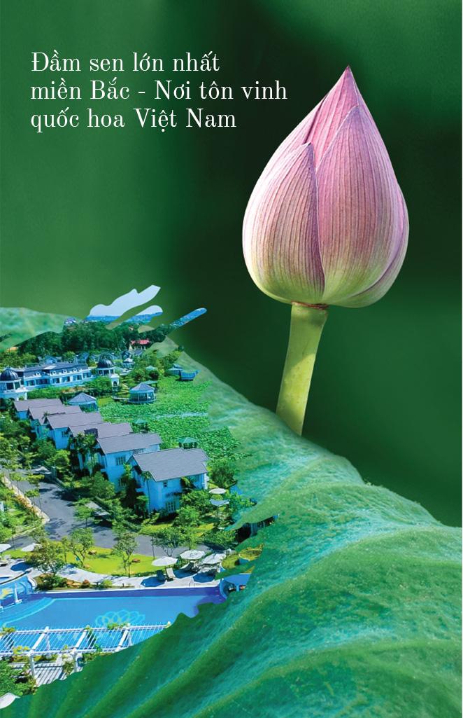 """Đón đầu xu hướng sở hữu ngôi nhà thứ hai, Vườn Vua Resort & Villas thu hút nhà đầu tư với """"lợi ích kép"""" sáng giá - Ảnh 5."""