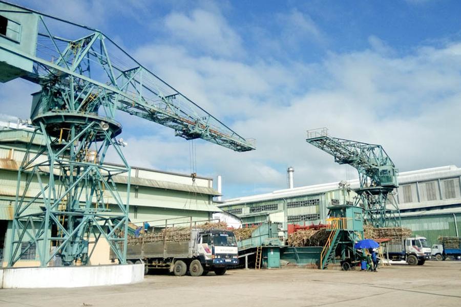 Nhà máy điện sinh khối An Khê ước tính mang lại 300 tỷ đồng/năm