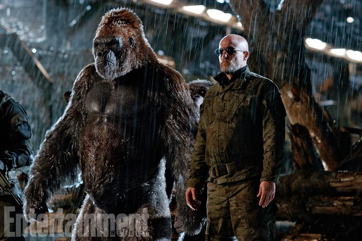 """""""Đại chiến hành tinh khỉ"""" – Cái kết mãn nhãn và xúc động cho loạt phim bom tấn """"The Apes"""" - Ảnh 3."""