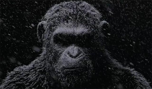Lời từ biệt tàn khốc và đầy nước mắt của loạt phim hành tinh khỉ - Ảnh 2.