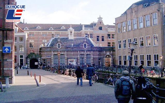 Tại sao nên chọn du học Hà Lan? - Ảnh 6.