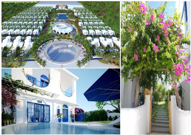 STS Hospitality bước vào đường đua M&A, sáp nhập NNA Media & Arris Design - Ảnh 1.