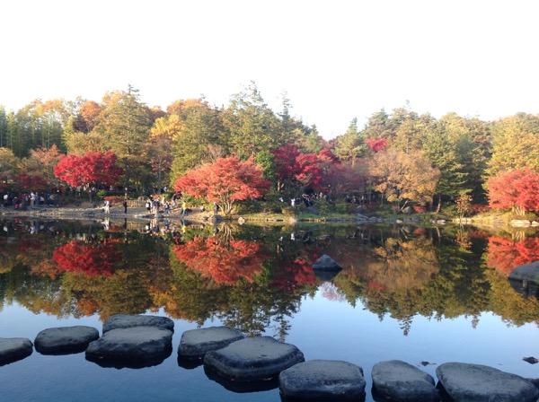 Nhật Bản - Tuyệt sắc giao mùa khiến bạn phải muốn đặt chân đến ngay - Ảnh 3.