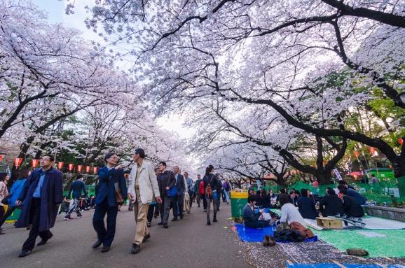 Nhật Bản - Tuyệt sắc giao mùa khiến bạn phải muốn đặt chân đến ngay - Ảnh 11.
