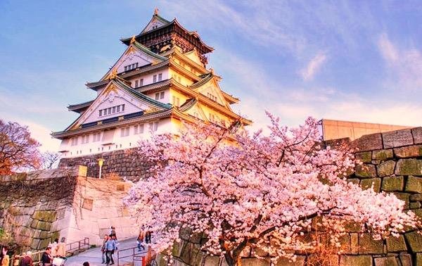 Nhật Bản - Tuyệt sắc giao mùa khiến bạn phải muốn đặt chân đến ngay - Ảnh 13.
