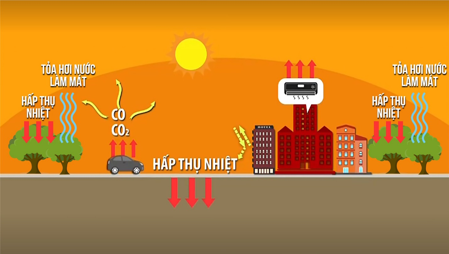 Kỳ lạ, cư dân Ecopark không cần bật điều hòa giữa ngày nóng đỉnh điểm - Ảnh 2.