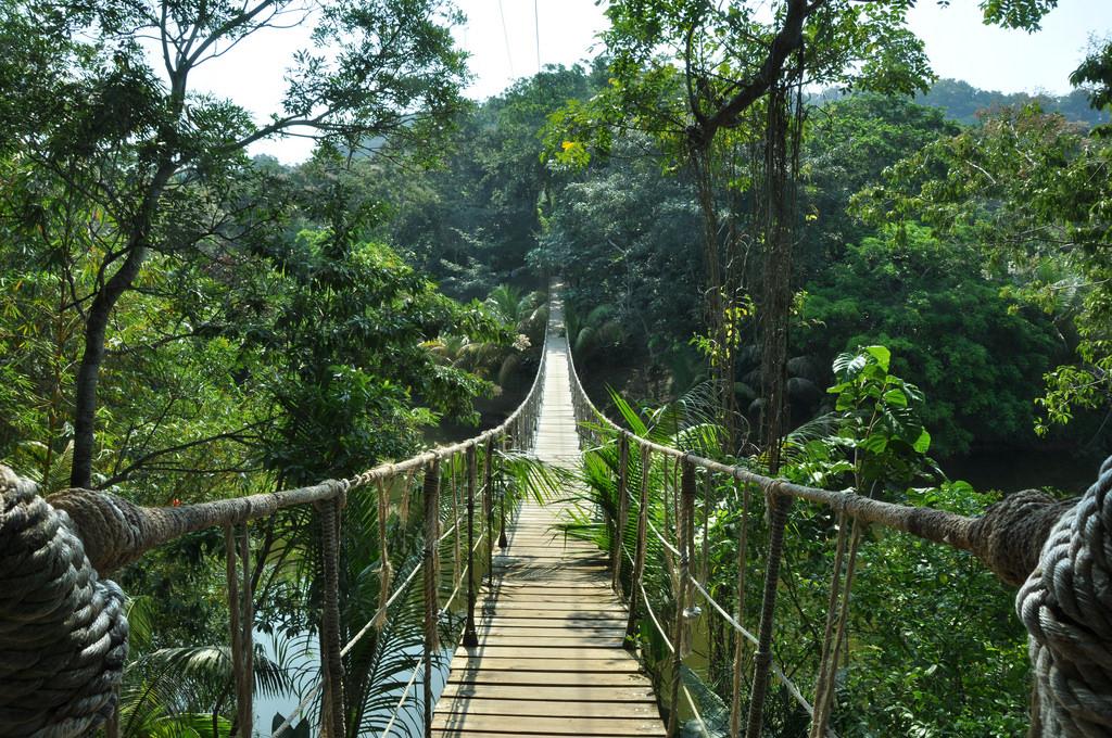 Xem chương trình du lịch tương tác trực tuyến của KingGo mới biết có một Malaysia đẹp hút hồn tới vậy! - Ảnh 22.
