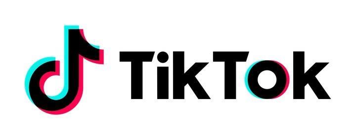 Chi Pu, Miu Lê, Châu Bùi làm giám khảo cuộc thi khủng nhất năm 2018 của TikTok - Ảnh 7.
