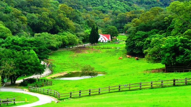 Trải nghiệm du lịch nông nghiệp tại Đài Loan với những cung đường đẹp ngất ngây, đáng giá từng xu - Ảnh 1.