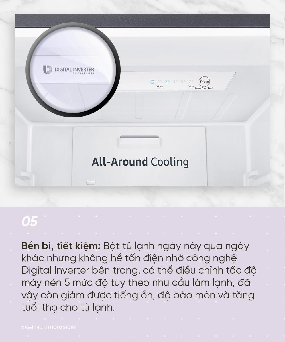 6+1 ưu điểm không thể phủ nhận của chiếc tủ lạnh -1 độ C - Ảnh 5.