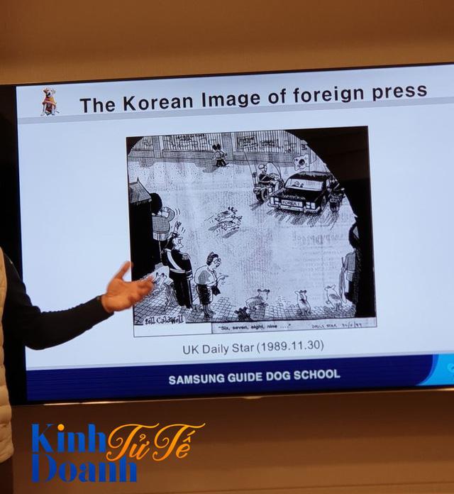 Tìm hiểu về ngôi trường dạy chó siêu độc đáo tại Hàn Quốc - Ảnh 2.