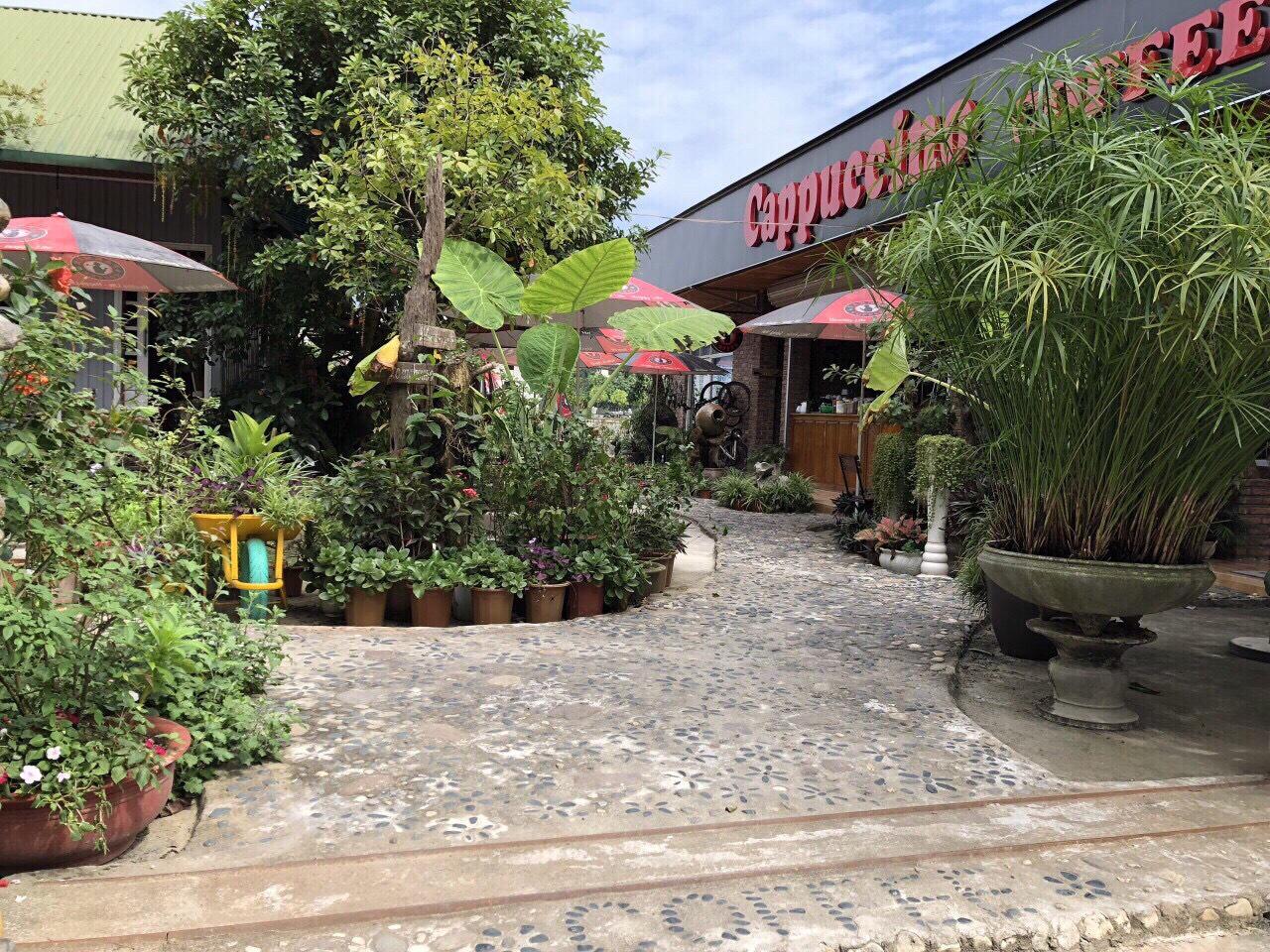 Đi Hà Giang không được bỏ lỡ quán cà phê Cappuccino Coffee - Ảnh 2.