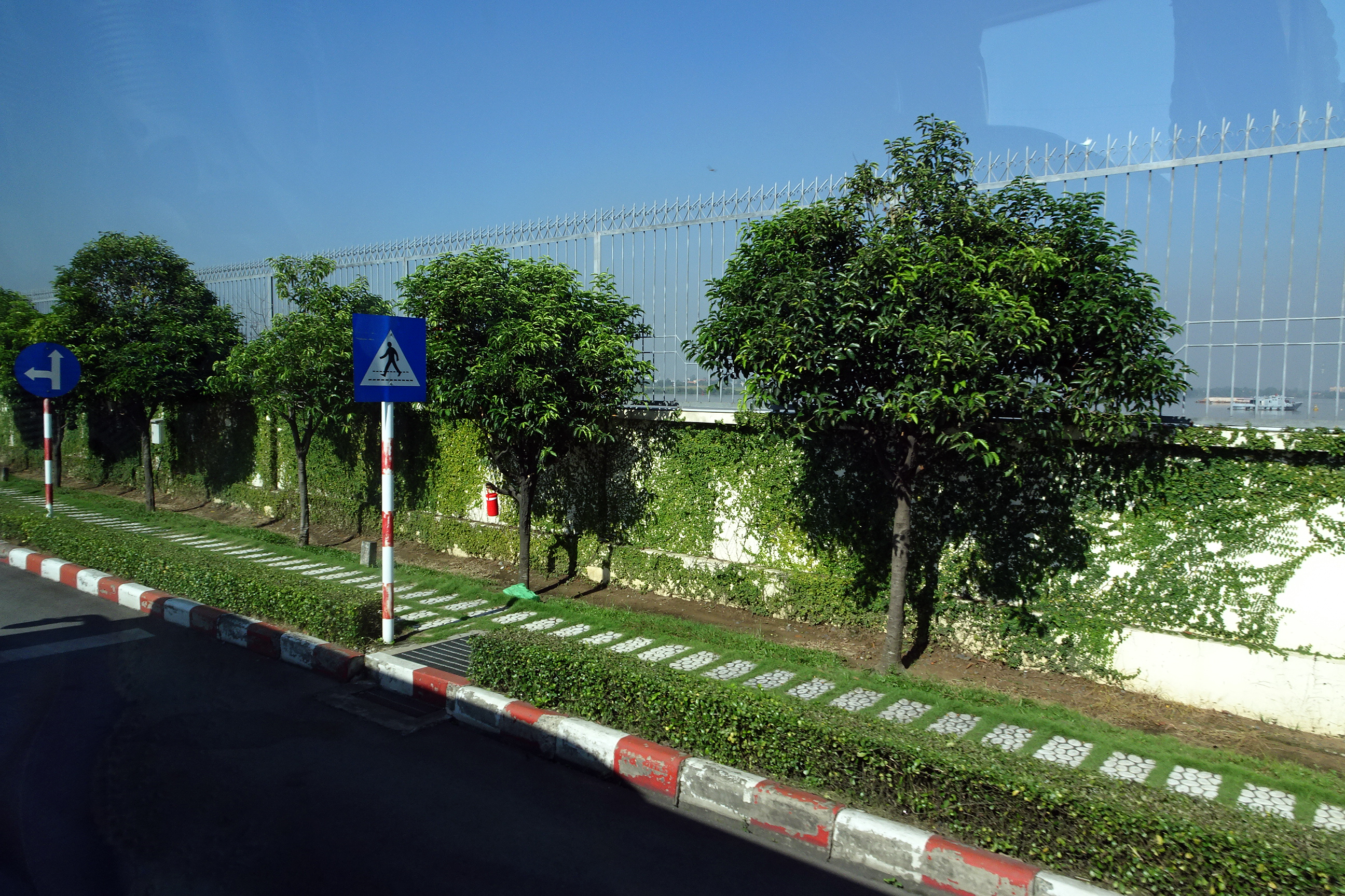 Bức tường phủ xanh dây thường xuân trong khuôn viên Ajinomoto Biên Hòa