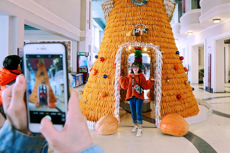 Giá vé cáp treo Fansipan giảm tới 50% vào lễ hội mùa đông - Ảnh 4.