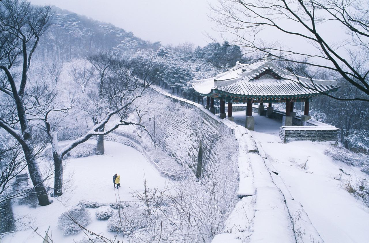 Đến xứ Hàn, thực hiện giấc mơ chạm vào tuyết trắng - Ảnh 2.