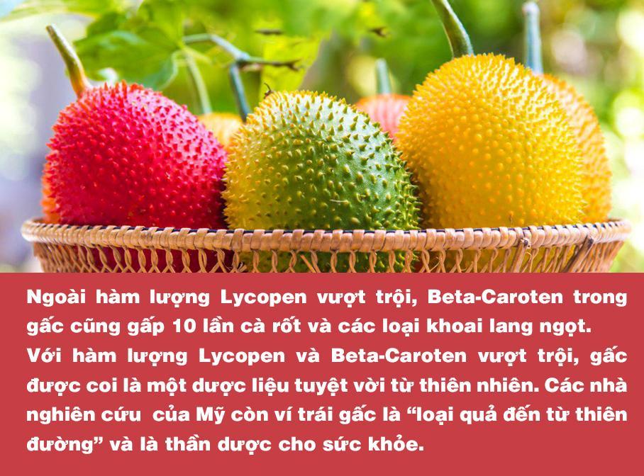 Chứa hàm lượng dưỡng chất cao gấp nhiều lần cà chua, cà rốt; gấc chính là thực phẩm vàng dành cho lá gan - Ảnh 3.