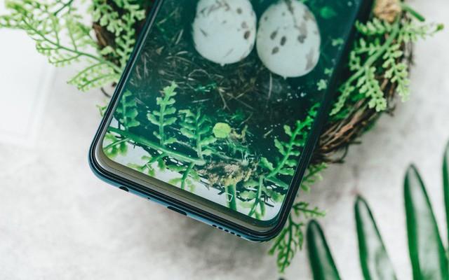 Trên tay và trải nghiệm nhanh Huawei Y9 2019 - Một sát thủ giải trí ở tầm giá dưới triệu đồng - Ảnh 3.