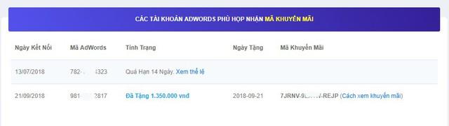 4 cách săn khuyến mãi từ Google Ads để tiết kiệm chi phí quảng cáo - Ảnh 2.