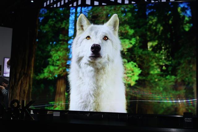 Chiêm ngưỡng tận mắt TV 8K 98 inch của Samsung: cực hạn hiển thị - Ảnh 5.