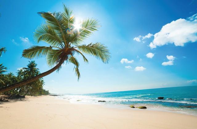 Choáng ngợp trước vẻ sang chảnh tuyệt đẹp của resort đẳng cấp phong cách Mỹ tại Phú Quốc - Ảnh 4.