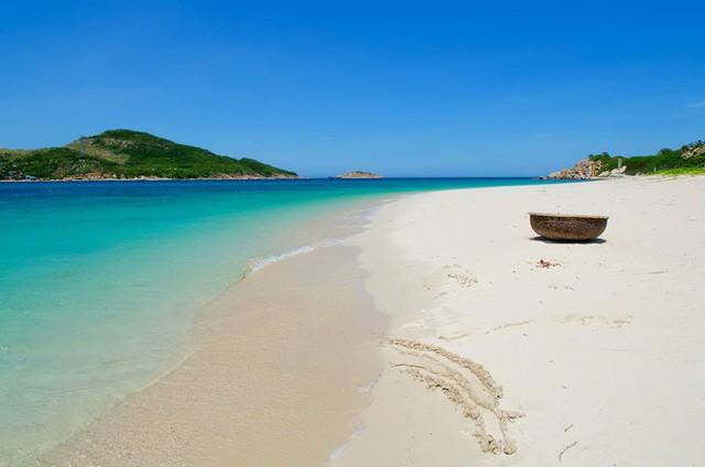 Bình Định chờ bùng nổ du lịch từ thương hiệu quản lý nghỉ dưỡng quốc tế - Ảnh 1.