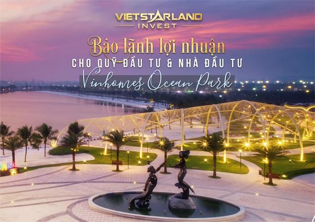 Vinhomes Ocean Park bàn giao biệt thự cho những khách hàng đầu tiên - Ảnh 2.
